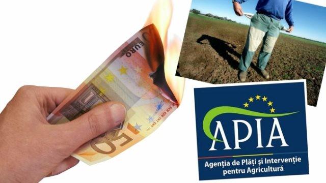 APIA: Mely gazdák kötelesek pénzt visszafizetni a kapott támogatásokból?