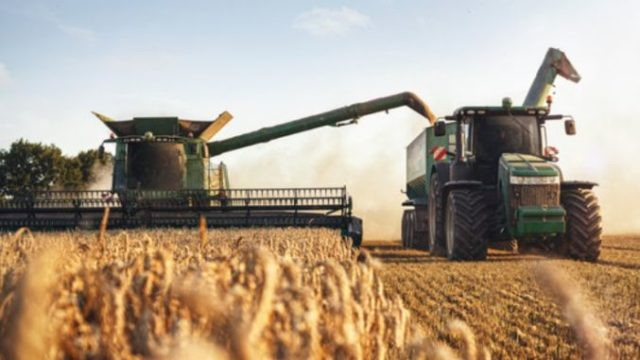 Producția națională de cereale 2020. Ce recoltă de grâu și porumb a avut România în acest an